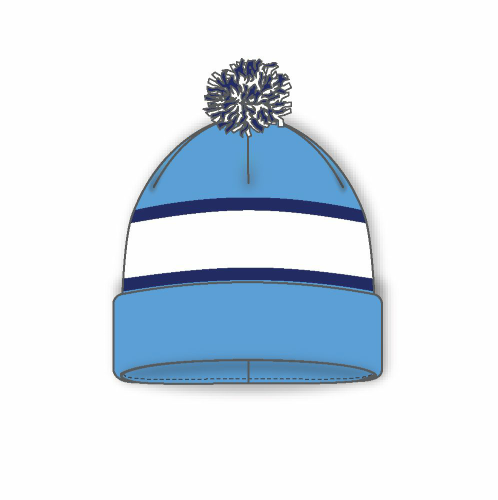 Hockey Toque