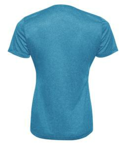 Ladies Performance V-Neck back Image