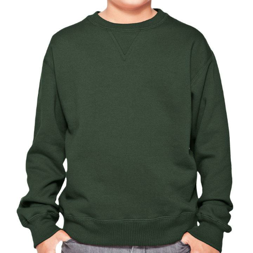 YOUTH 16 OZ. CREWNECK w/ V-INSERT SWEATSHIRT front Image