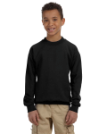 Youth Crewneck Sweatshirt front Thumb Image